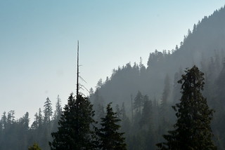 SMOKE IN THE VALLEY OF THE NORTH CASCADE MOUNTAINS.