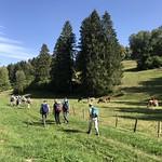 2018-09-12 Lac Vert (65)