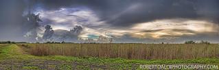 Loxahatchee Panorama | by Roberto_Aloi