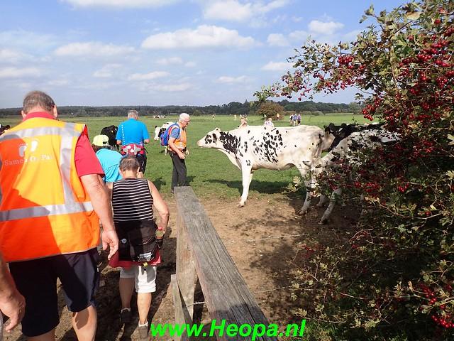 2018-09-19                  Amerongen     23 Km (197)