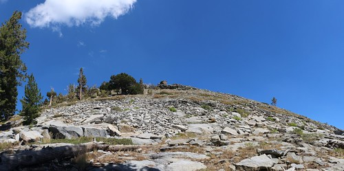 1150 The Phipps Peak summit is directly above us on the Tahoe-Yosemite Trail but we didn't stop to climb it   by _JFR_