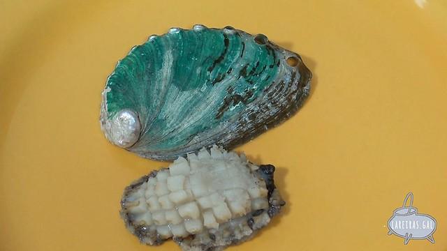 Oreja de mar - Abalón