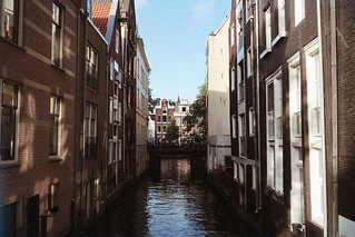 Diary entries from life in Amsterdam | by A tiny bit beautiful
