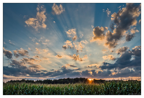 cleveland ohio punderson state park crepuscularrays crepuscular rays sun corn field