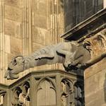 Einer der vielen Wasserspeier des Kölner Doms