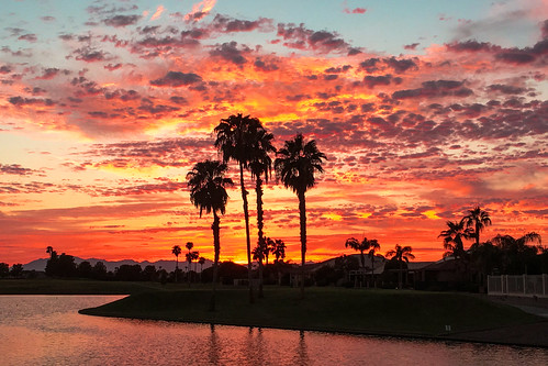 sunset summer sky clouds red sunlakes arizona palms palmtrees trees contrast