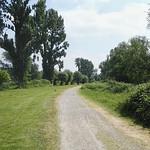 Weg in der Saarn-Mendener Aue