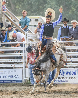 2018 CPRA Cochrane Aug11 - Saddle BroncB 320 | by calgarypolicerodeophotos