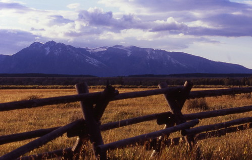 Teton Fence | by Whirling Phoenix
