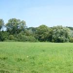 Panorama der Saarner Aue