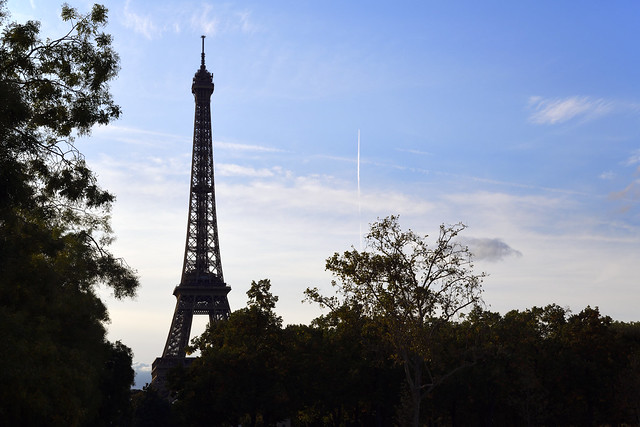 Rise up (Eiffel Tower, Paris)  -  (Selected by GETTY IMAGES)