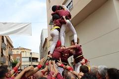 Sant Vicenç dels Horts 2018 Jordi Rovira (24)