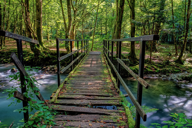 Oštećeni drveni mostić preko potoka Curka