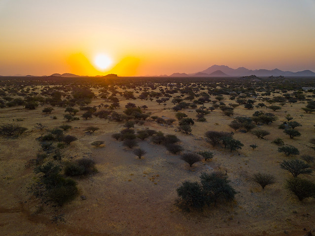 Aerial view of a sunset over the bush, Namibe Province, Virei, Angola