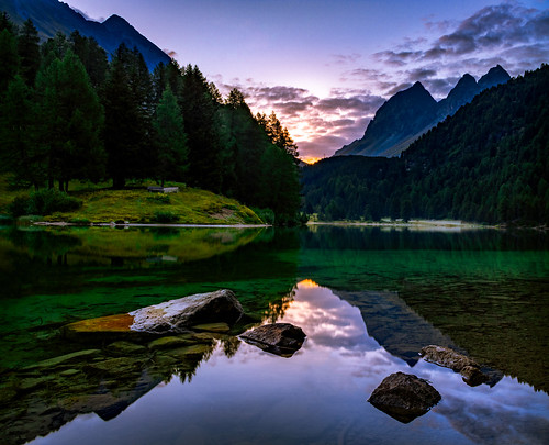 mountain lake reflection sunrise stones trees water purple green switzerland graubünden bergün preda laidapalpuogna palpuognasee
