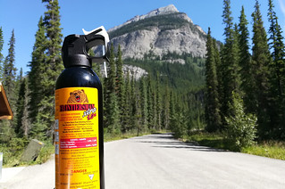 bear-spray-hiking | by quirkytravelguy
