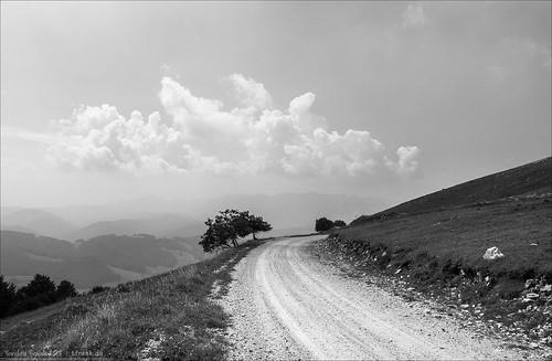 baum bikepacking bosnienundherzegowina dinarischesgebirge gebirge gravel laubbaum pflanze radrennen radsport schotter tcrno6 technik transcontinentalrace verkehr wanderweg weg wolke unbefestigt strasenbelag strase bjelašnica