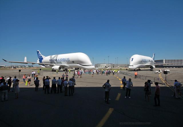 BelugaXL_Airbus_F-WBXL-043_cn1824 (in explore)
