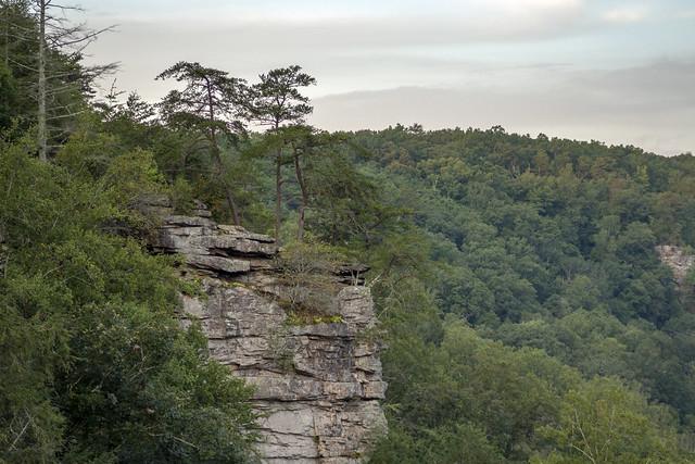 Buzzards Roost, Fall Creek Falls SP, Van Buren County, Tennessee 7