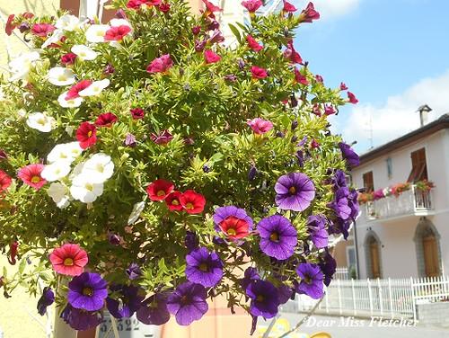 Montebruno (3) | by Dear Miss Fletcher