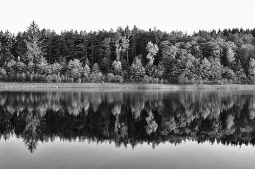 versetalsperre herscheid lake reflection forest symmetry abstract monochrome lüdenscheid sauerland nrw talsperre