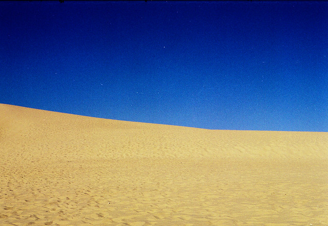 461 - Sand Dunes on Fraser Island