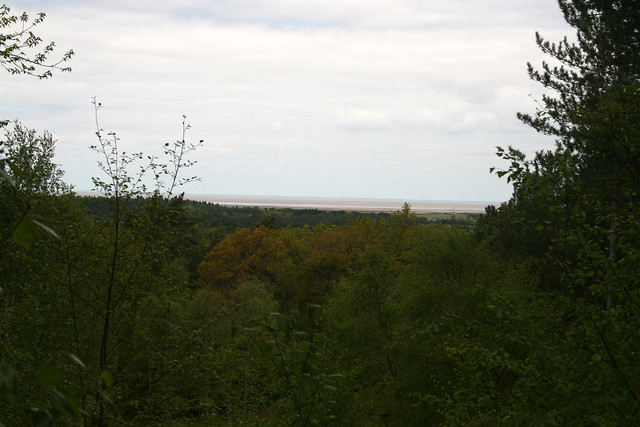 Viewpoint off The Scenic Drive, Sandringham Country Park