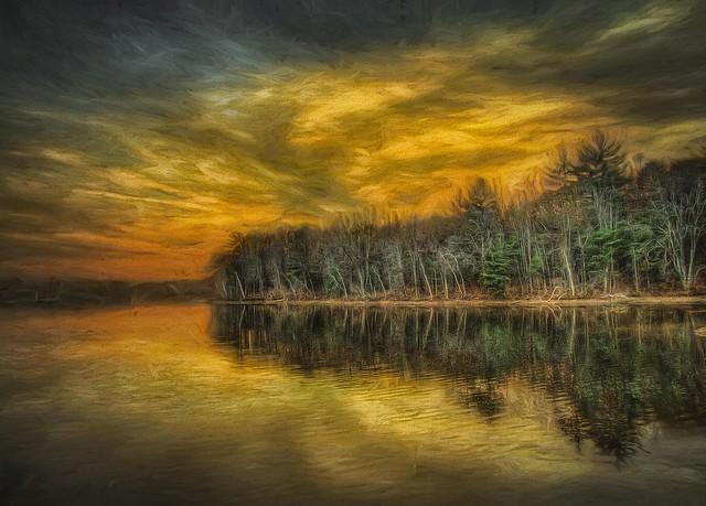 Artichoke Sunset
