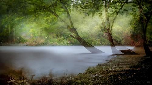 woods longexposure doubleexposure neutraldensityfilter storm rain light illumination inspirational