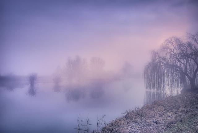 Land of foggy