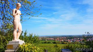 WtasO Deidesheim Paradiesgarten duesiblog travelblog 21 | by duesiblog