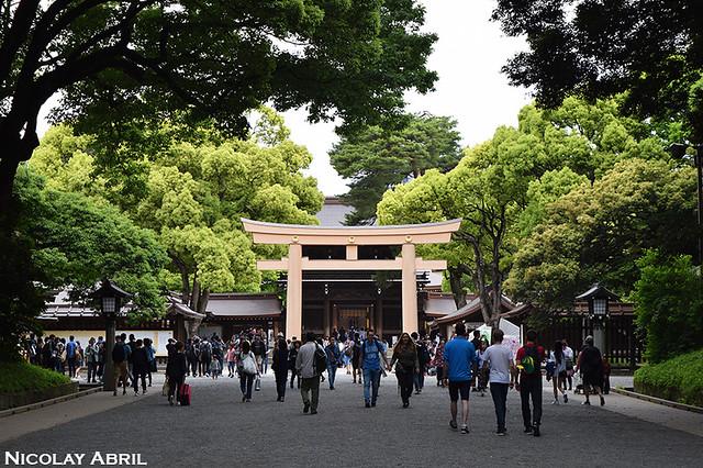 Tokyo's Meji Shrine