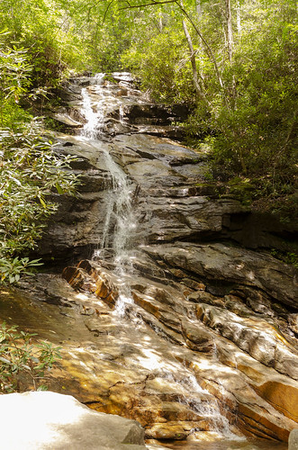 jones gap the south carolina forest woods outdoor landscape water stream middle saluda waterfall
