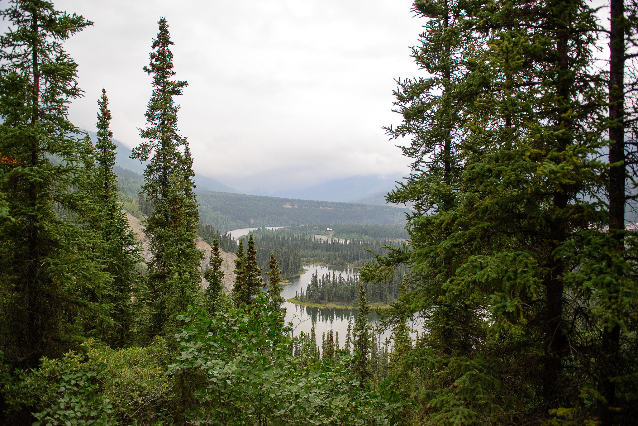 Hike Horseshoe Lake Lookout - Denali