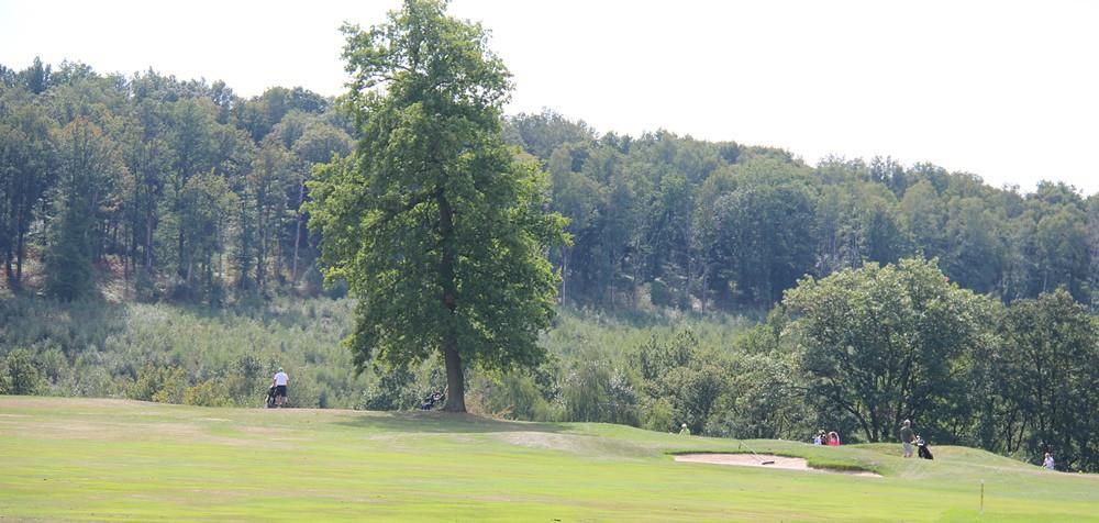 Franck Lorenzo-Vera lance son appli de rencontres (entre golfeurs), Globe Golfer