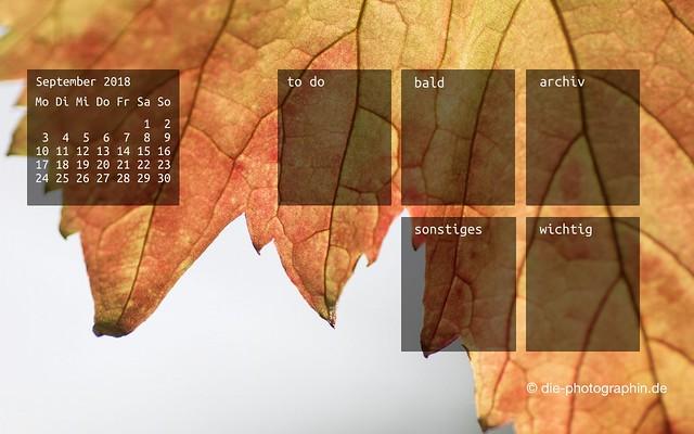 092018-weinblatt-organizedDesktop-wallpaperliebe-diephotographin