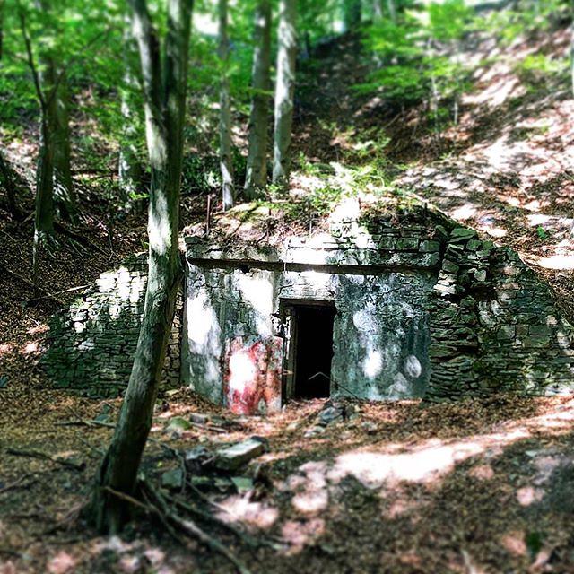 Eingang zum Untergrund #witten #steinbruch #motoradtrial #trial #wald #ruhr #masteruser1999 #September #2018 #flickr