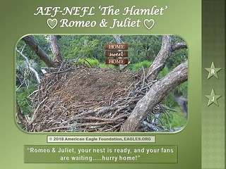 R&J home sweet home victoria | by aefmods