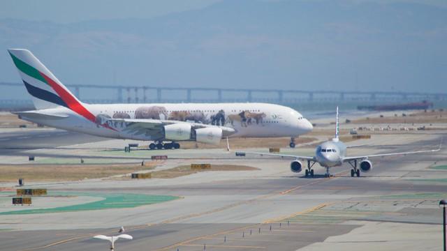 Emirates Airbus A-380 Animal Markings DSC_0512