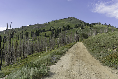 Climb to 10,000 | by Trail Image
