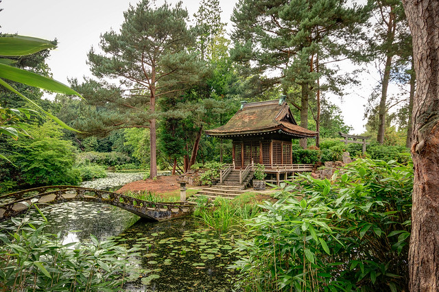 Japanese Garden, Tatton Park. Cheshire UK