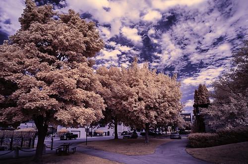 baycitymichigan infrared wenonapark