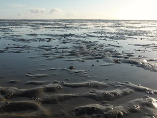 Serenity at low tide, Boschplaat Terschelling | by Alta alatis patent