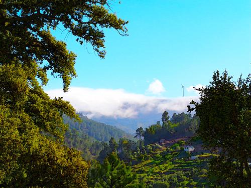 portugal sobraldesãomiguel aldeia aldeiaserrana verde neblina natureza árvores torreeólica