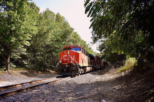 norfolk southern marion branch train canadian national trees