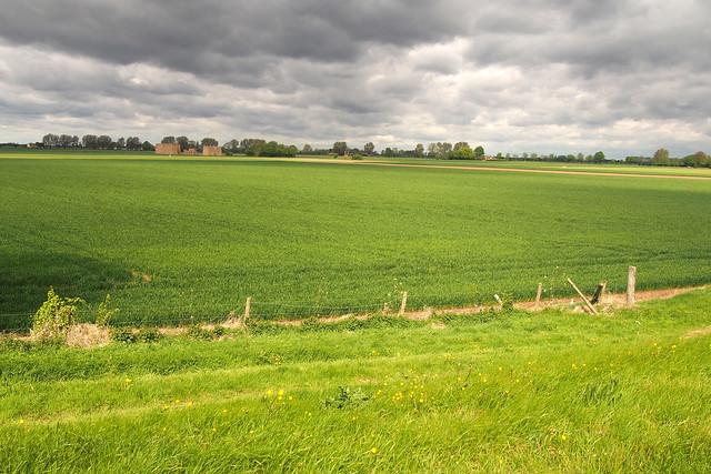 Fields near Sutton Bridge