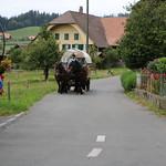 Eidg. Hornusserfest 2018 Walkringen A-Mannschaft