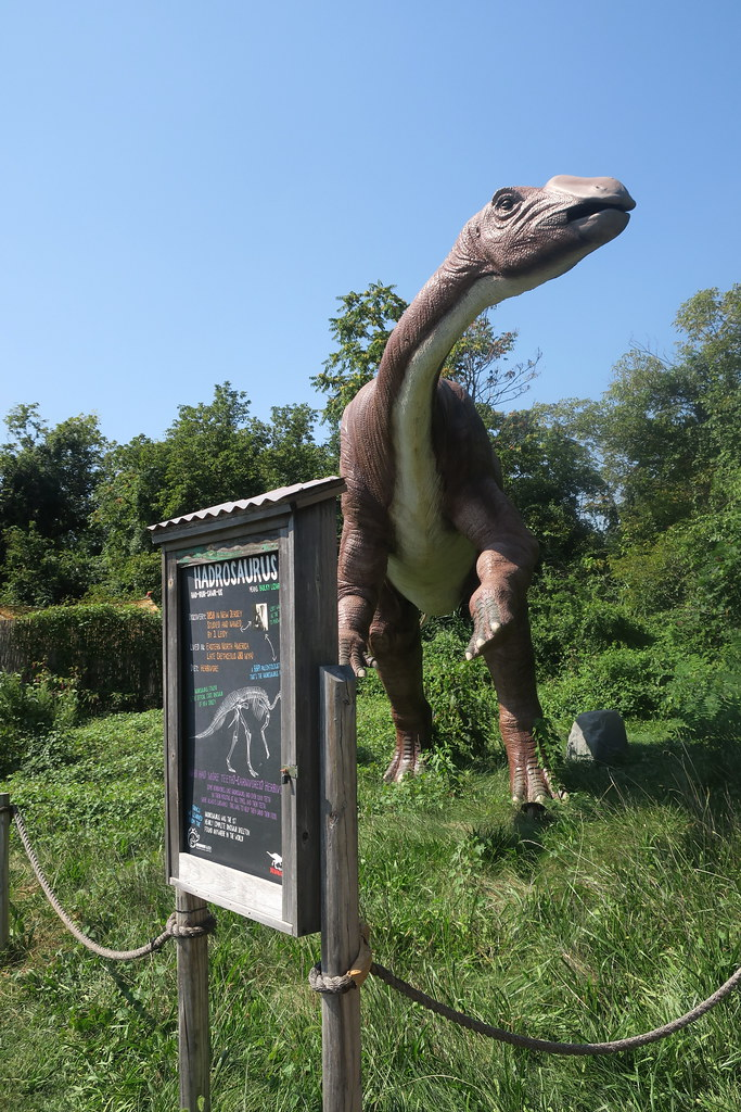 NJ - Leonia: Field Station: Dinosaurs - Hadrosaurus | Flickr