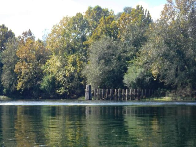 Savanah River with LCU-59