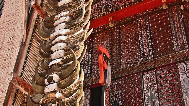 INDONESIEN; SULAWESI, Tanah Toraja , in Lemo, Giebelschmuck an einem   tongkonan , die Büffehörner der Opferstiere und dieSchnitzereien symbolisieren  den Wohlstand der Familie,  17630/10639